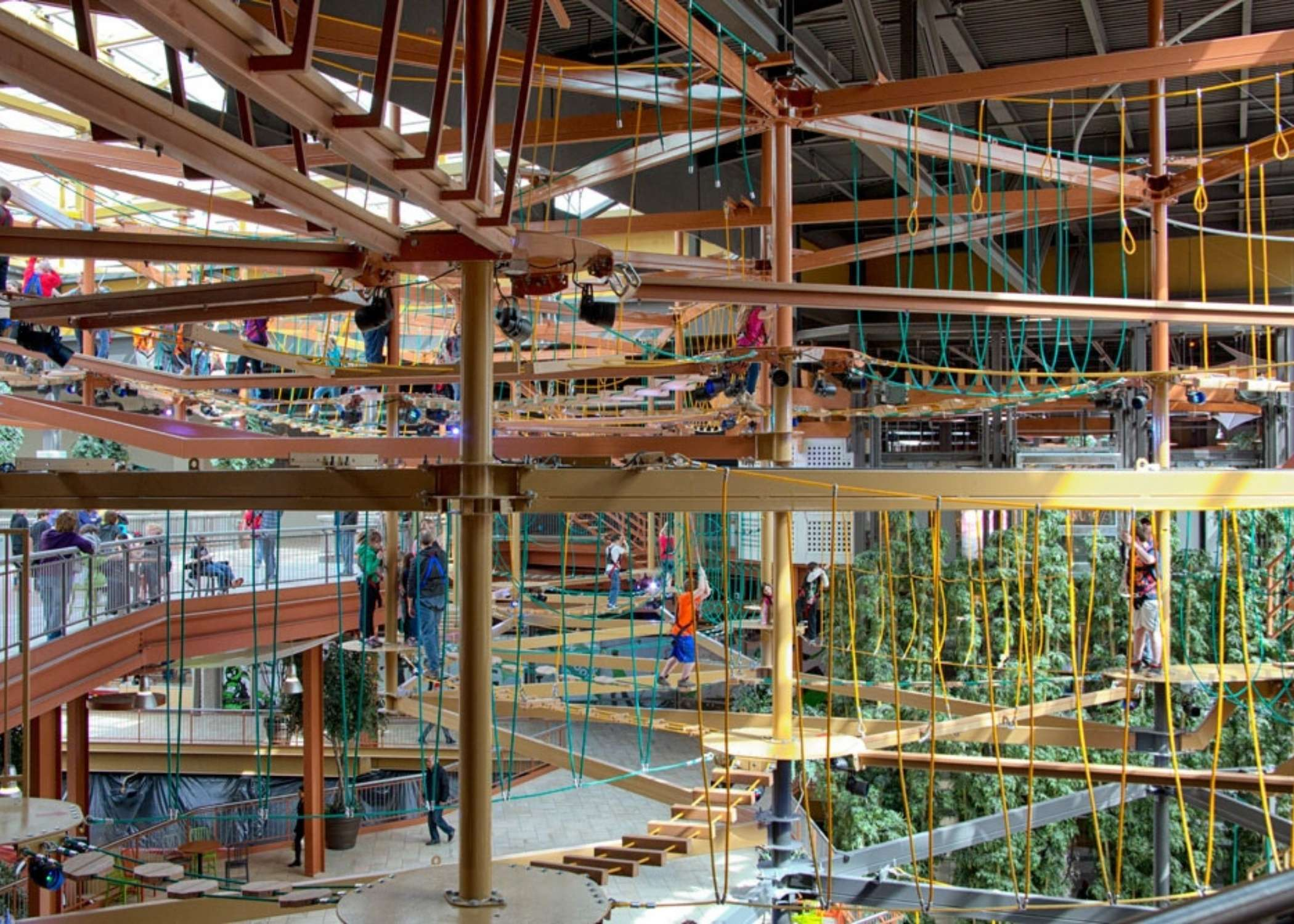 RCI Installation, High Ropes Courses